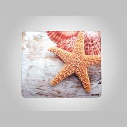Mintás egérpad-tengeri csillag